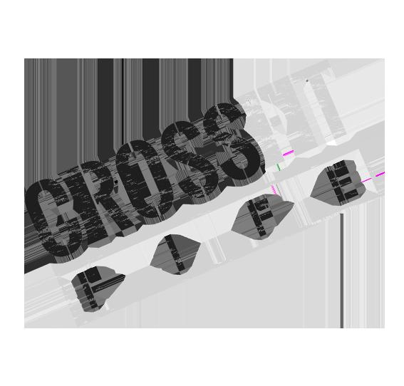 Crossfit Fife Dunfermline Stamp Logo